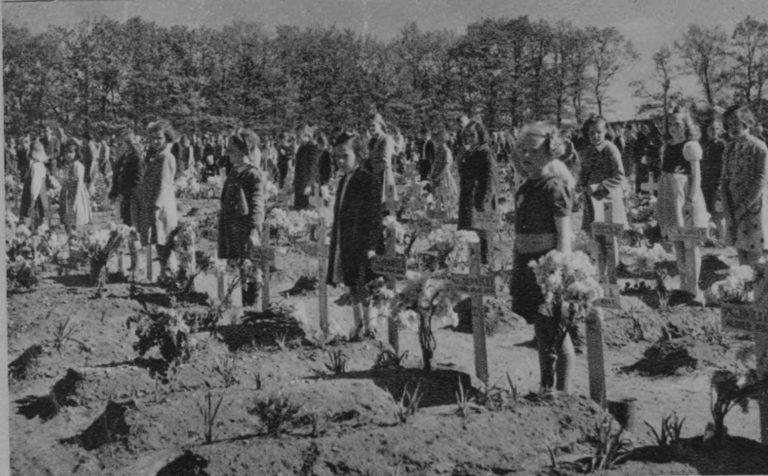 Airborne Begraafplaats 1946 ©GeldersArchief